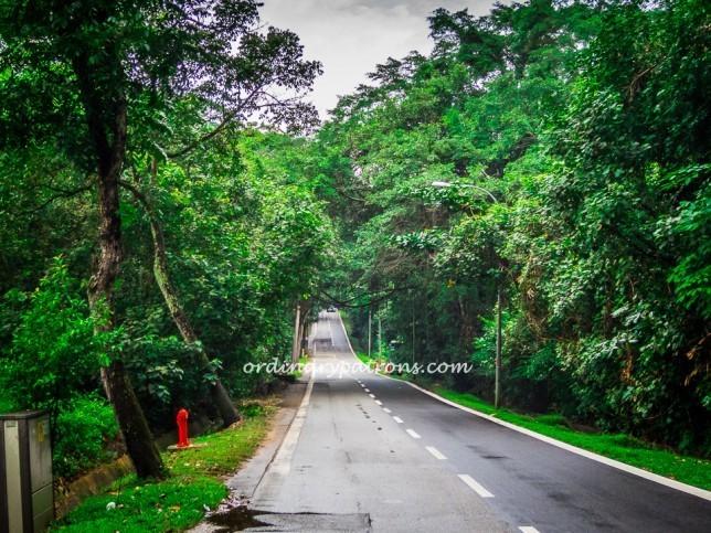 Punggol Road