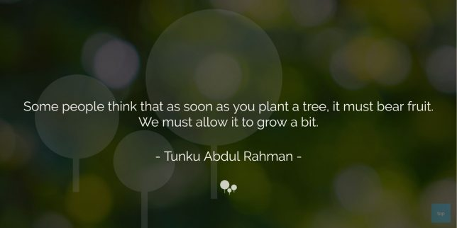 Some people think that as soon as you plant a tree, it must bear fruit. We must allow it to grow a bit. -Tunku Abdul Rahman   quote